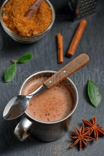 Cup of hot chocolate, cinnamon sticks