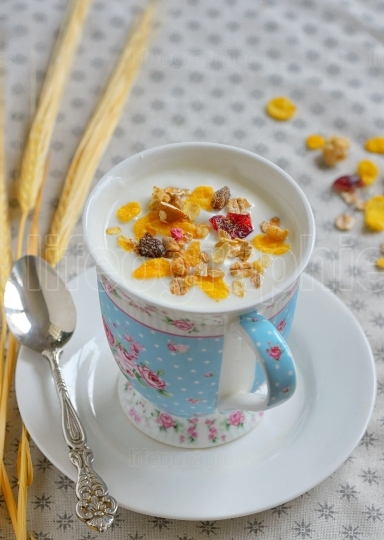 Cup of yogurt with cereals