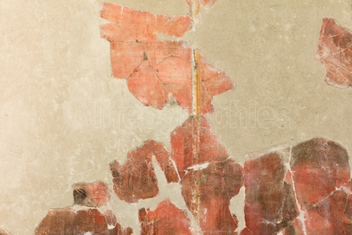 Detail of red pompeian fresco