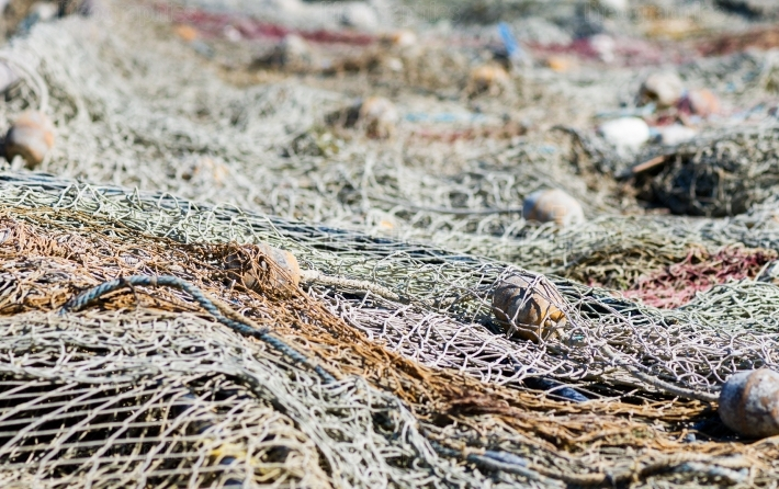 Details of an old fishing net