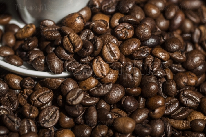 Details of coffee beans