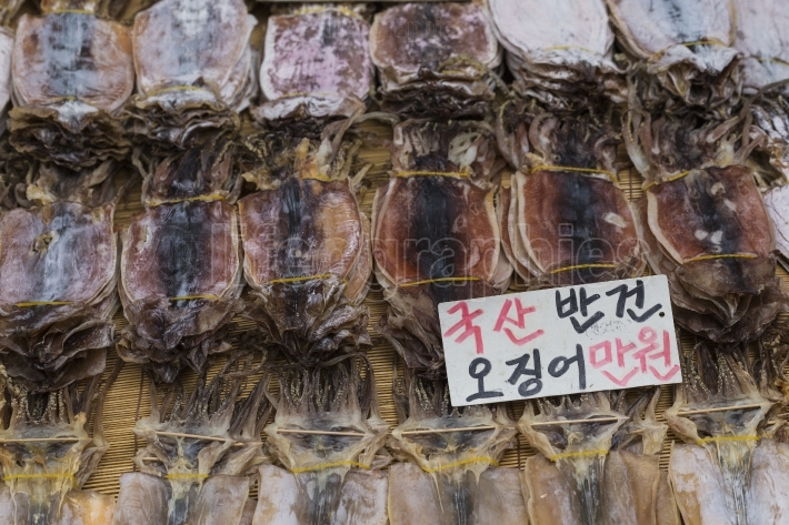 Dried squid in at market in Korea