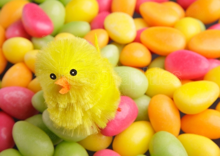 Easter candy with chicken
