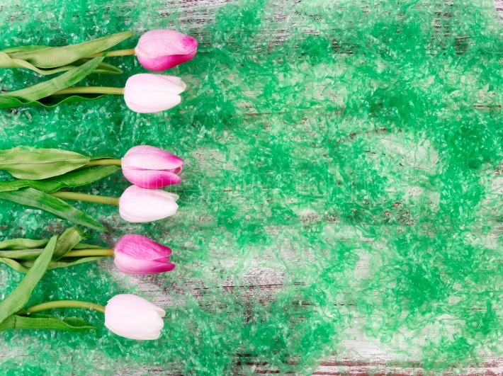 Easter tulips on green grass and wooden background