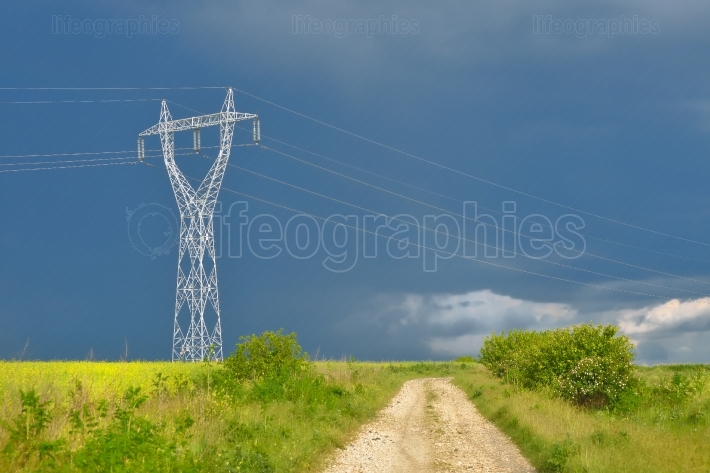 Electric power lines in rape field after summer storm