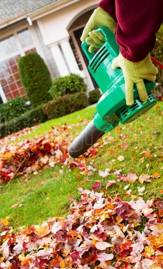 Electrical Blower Cleaning Leaves from Front Yard during Autumn