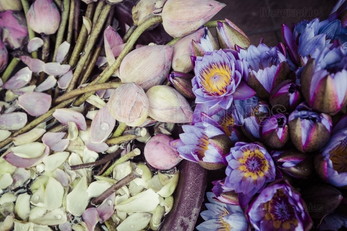 Flowers sold to be used as offerings in front of the temple of t