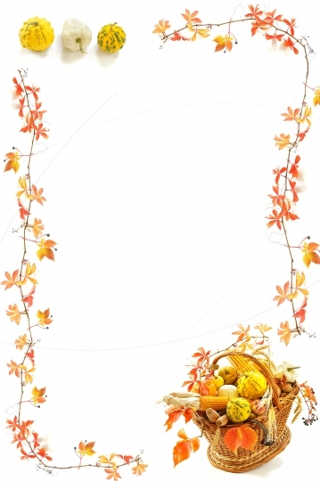 Frame with pumpkins and autumn leaves