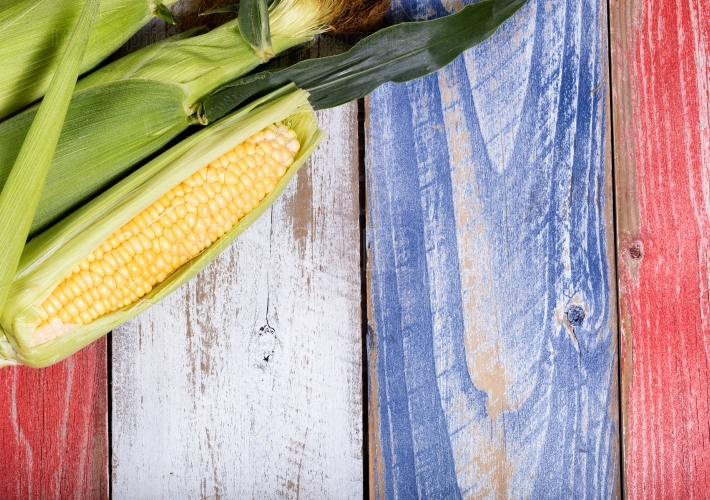 Fresh corn on rustic boards painted in USA national colors