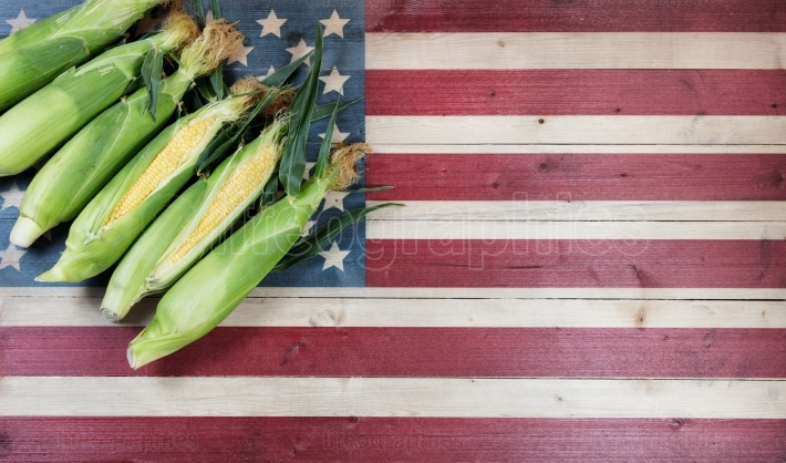 Fresh sweet corn on faded wooden flag of United States of Americ