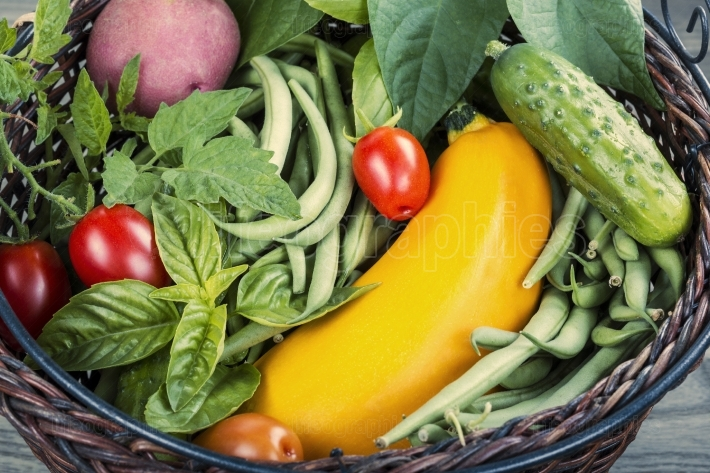 Garden Fresh Vegetable Basket