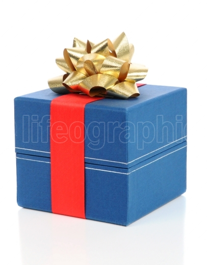 Gift Box with Red Ribbon and Gold Bow