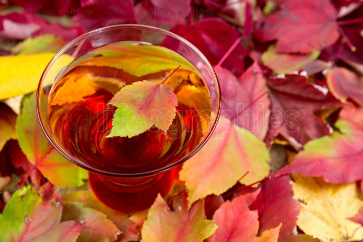 Glass of Sparkling Apple Cider with Autum Leaves