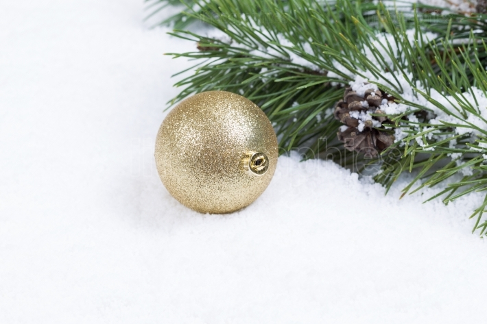 Gold Christmas Ornament on Snow with Fir Branch
