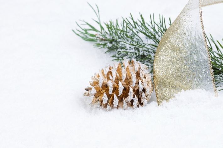Golden Pine Cone with Ribbon and Fir Branch on snow