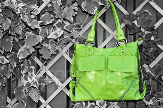 Green handbag isolated on natural background