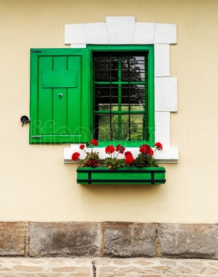 Green window with flower box and shutters