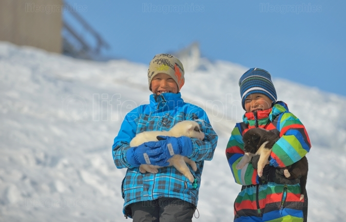 Greenland dog puppies and kids in  Greenland  07 April 2013