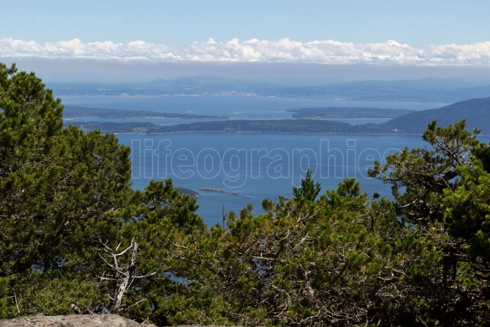 High view point of the San Juan Islands during summertime