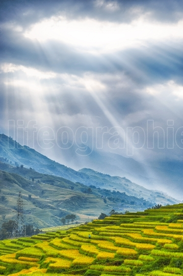 Hills of rice terraces with mountains and clouds at background