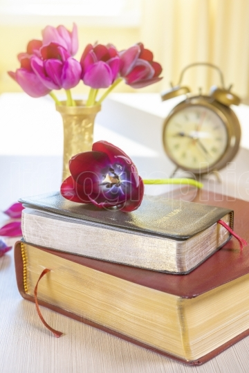 Holy Bible and old gold alarm clock on wood table