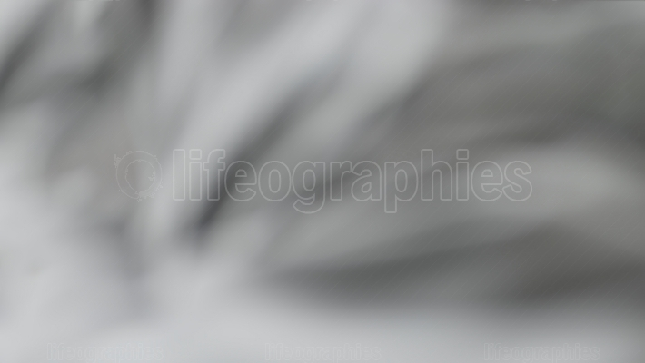 Horizontal black and white bokeh canvas background