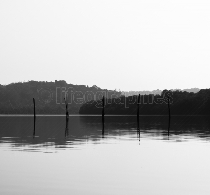 Horizontal black and white fishing nets reflections background b