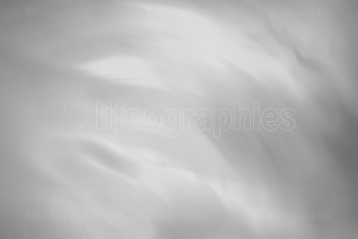 Horizontal crumpled black and white office business paper textur