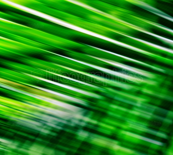 Horizontal vivid fresh green palm leaves blur motion abstraction