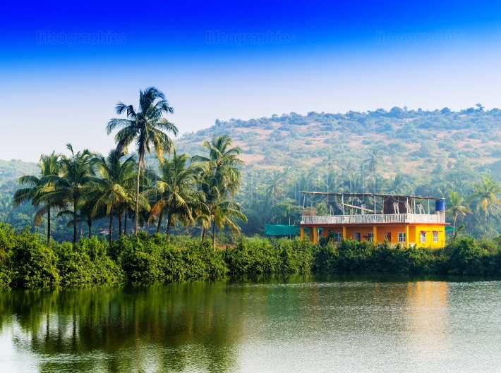 Horizontal vivid Indian house palms with river reflection backgr