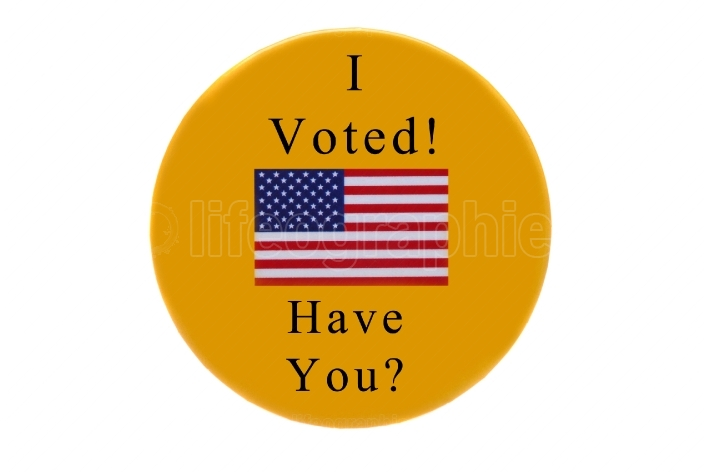 I Voted Have You Button