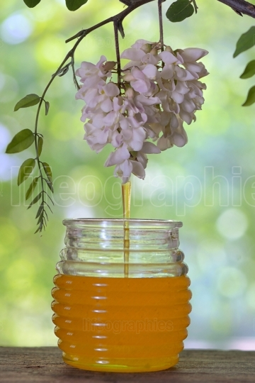 Jar of honey with flowers of acacia on table
