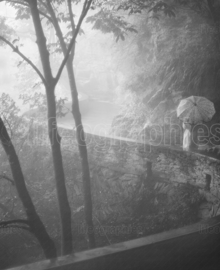 Lady with umbrella through a mystical deep forest covered by dense fog