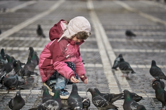 Little girl in a city square feeding pigeons