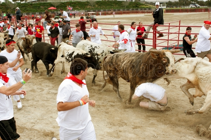 Man Crumples And Gets Trampled Running With The Bulls