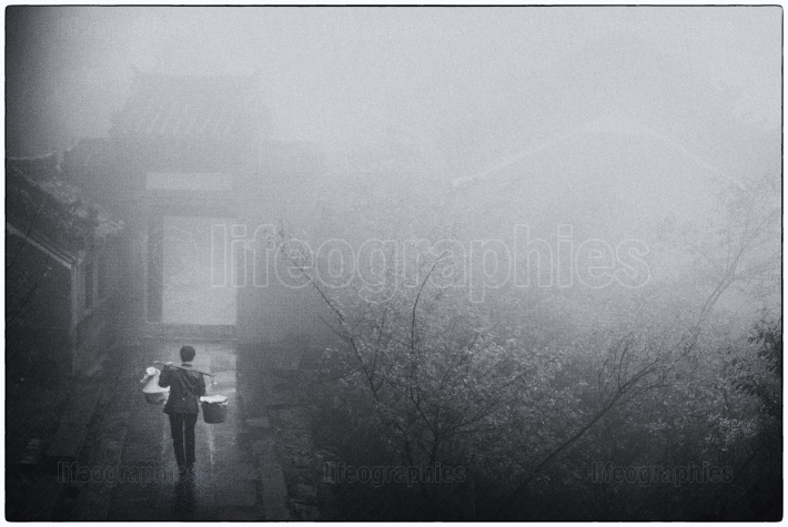 Man who carry heavy luggage into a fogy landscape with trees and narrow path inside an old forest