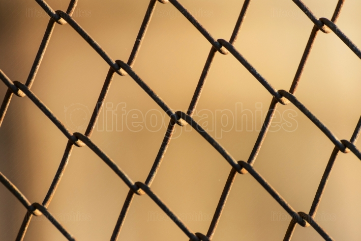 Metal mesh wire fence close-up