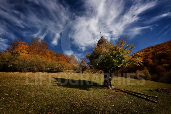 Mountain rural landscape in autumn