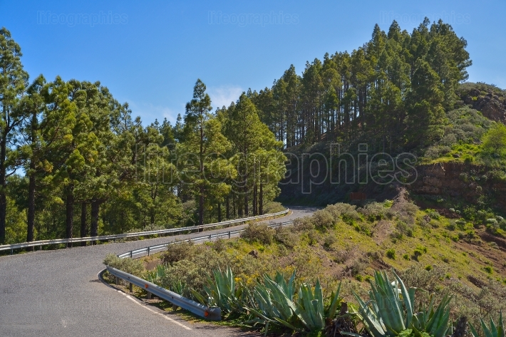 Mountainside road in gran canaria, spain