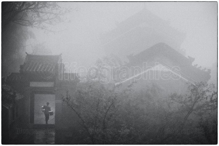 Mystical paths covered by fog in the wudang mountains