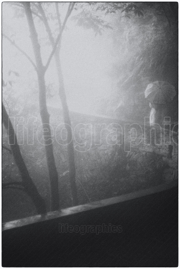 Mystical shape of a lady covered by fog in the middle of the forest