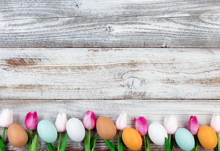 Natural eggs and pink tulips for Easter holiday on rustic wooden
