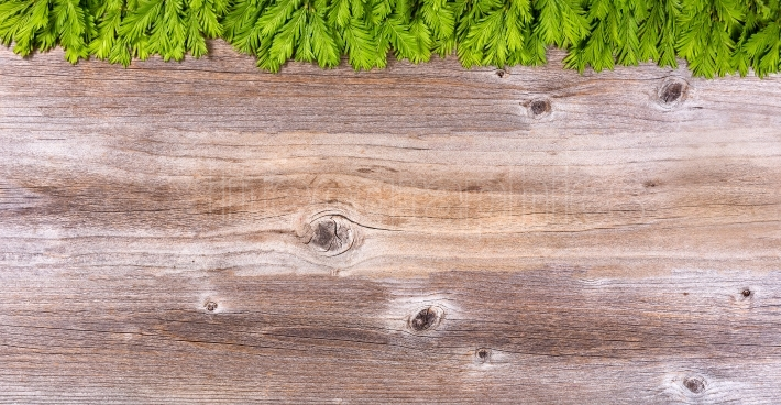 New fir tree branches on rustic wood board for holiday season