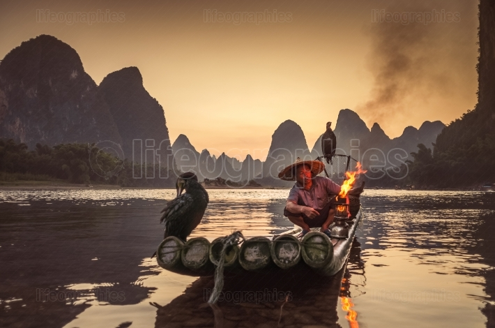 Night fshing with cormorants on the river Lijiang