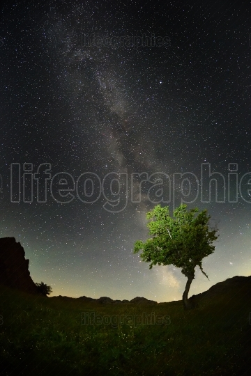 Night landscape with the Milky Way above the fields