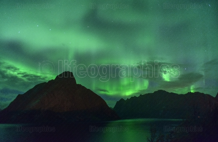 Northern lights aurora borealis from lofoten, norway