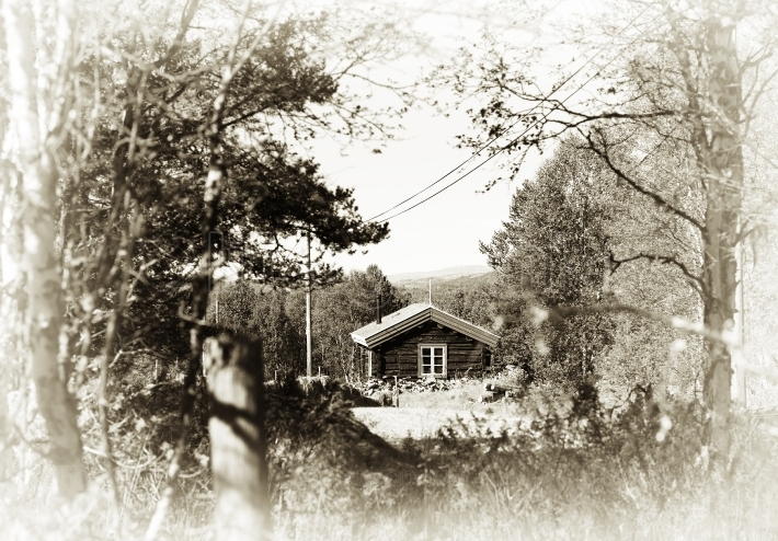 Norway distant farm house in woods sepia background