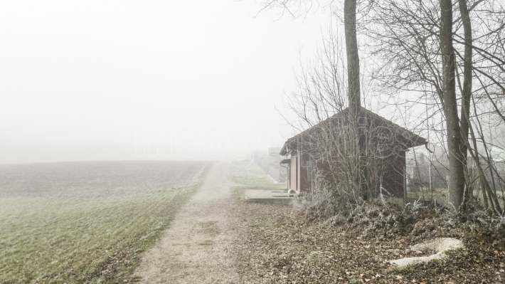 Old house and fogy atmosphere near a farm field