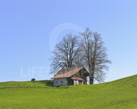 Old traditional house in Aeschiried landscape
