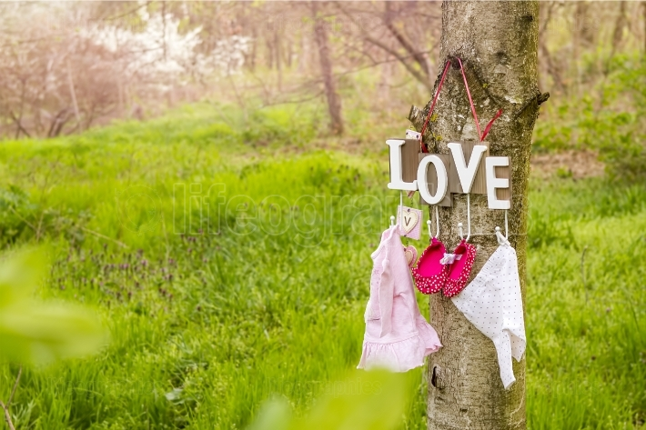 Pink baby shoes and dress hanging on the tree